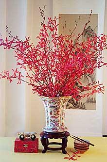 aranthera bouquet